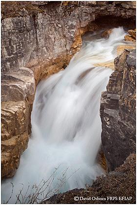 David Osborn Nature Photography Canadian Rockies